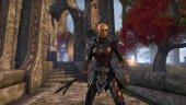 Чего ждать от The Elder Scrolls Online: Tamriel Unlimited?