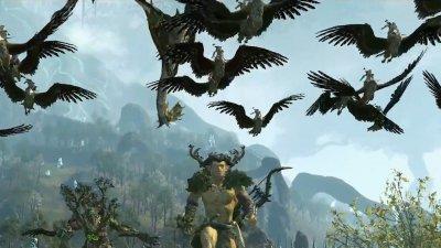 Лесные Эльфы уже в Total War: WARHAMMER