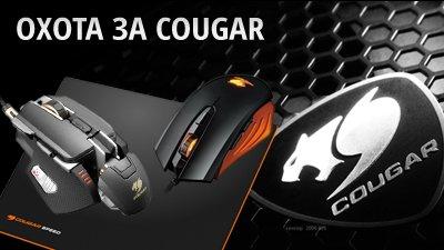 Охота за COUGAR