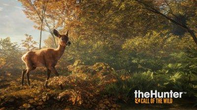 theHunter: Call of the Wild выйдет уже в феврале