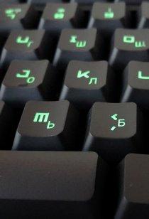Полотно клавиатуры Razer Cynosa Pro.