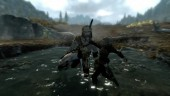 The Animation of Skyrim